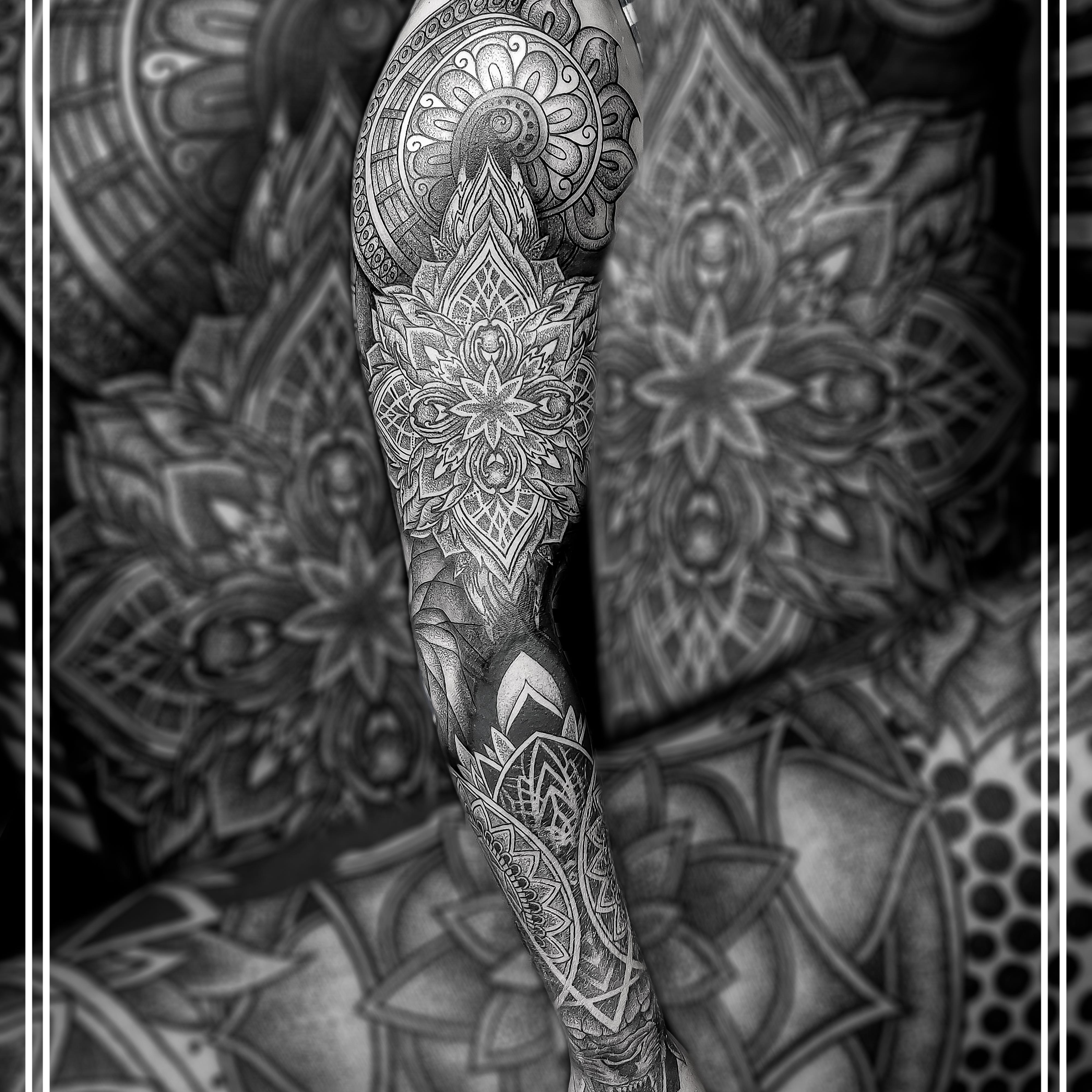 89262547250 W/a, Viber